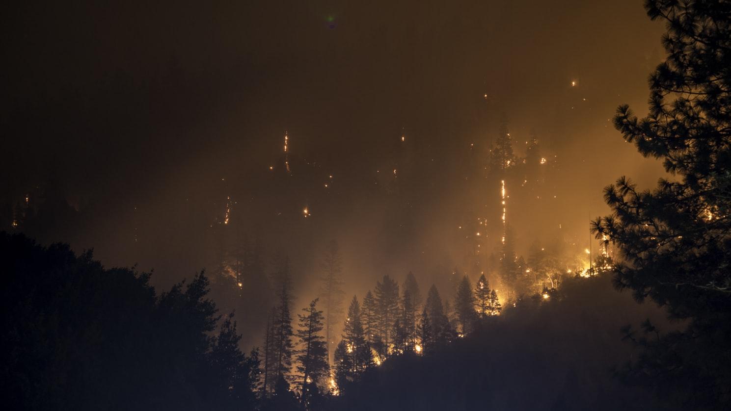 smokey forest fire at night